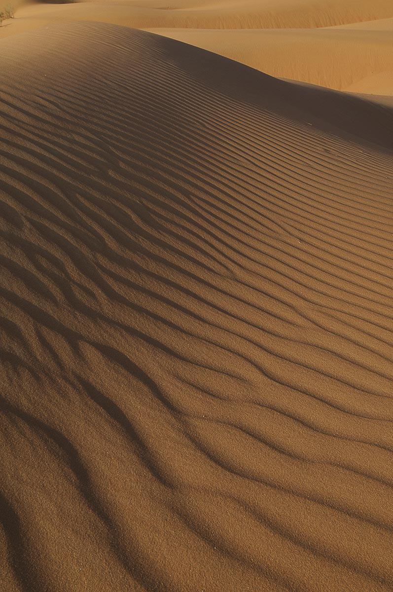 1-Saudi-Arabia-Empty-Quarter-Dunes-0711new